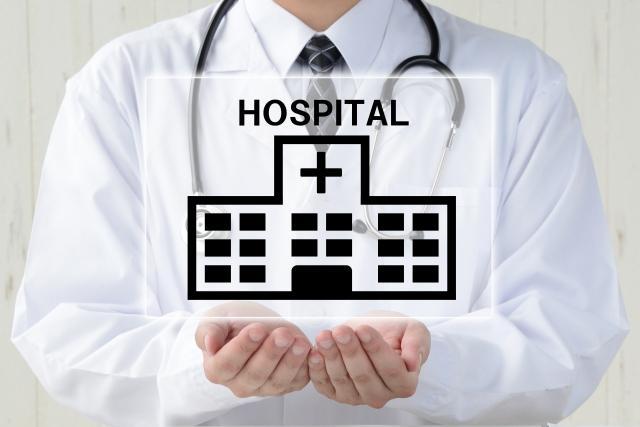 ハムスターの動物病院治療費はいくら?保険適用料金はある?