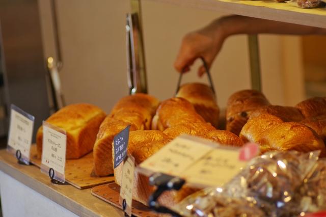ハムスターにパンをあげてもいい