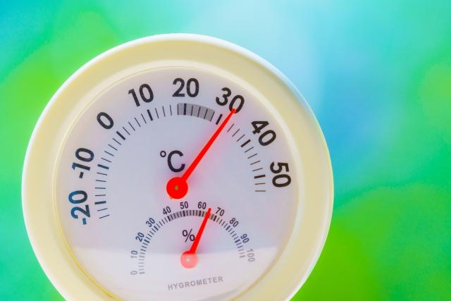 ハムスターの温度計のつけ方1